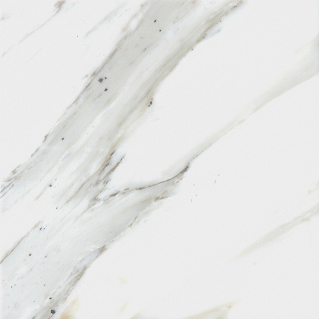 Polished Calacatta Gold Marble 12x12 18x18 Amp 24x24 Tile