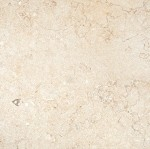 Isis Gold Limestone | 12x12 | 18x18 | Honed
