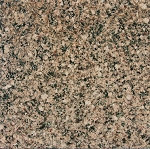 Desert Brown Granite | 12x12 | Polished
