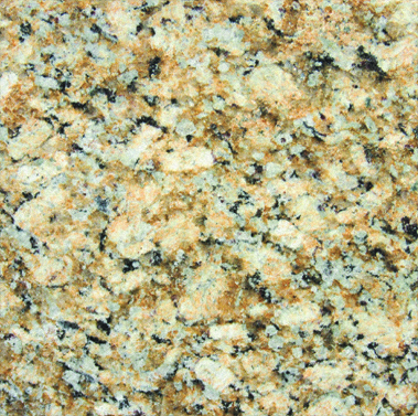 Giallo Napolean Granite 12x12 Polished