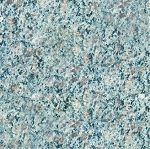 Caledonia Granite | 12x12 | Polished