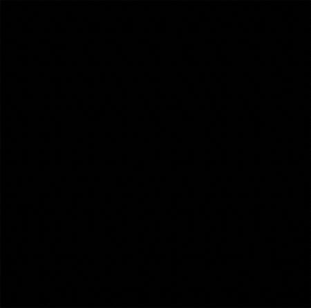 Premium Plus Black Granite 24x24 Polished