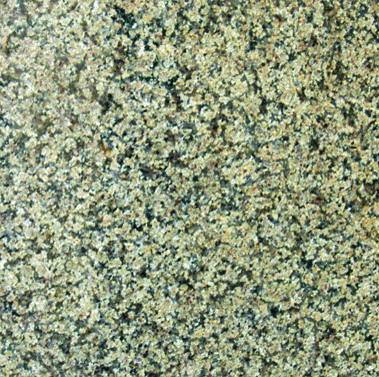 Royal Cream Granite | 12x12 | Polished