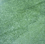 Tasmanian Green Granite | 12x12 | Polished
