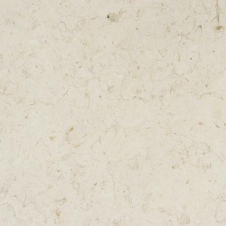 Polished Jerusalem Bone 12x12 Amp 16x16 Limestone Tile