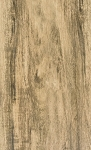 Ecollection| 6x36 | Cottonwood Wood Tile Porcelain