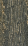 Ecollection | 6x36 | Forest Wood Tile Porcelain