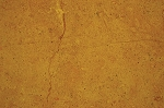 Inca Gold Marble | 12x12 | 18x18 | Honed