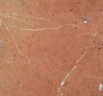 Rojo Alicante Marble | 12x12 | Polished