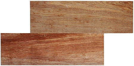 Natural Wood Plank Porcelain | 6.5 x 20