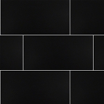 Black Polished Tile | 12x24 |